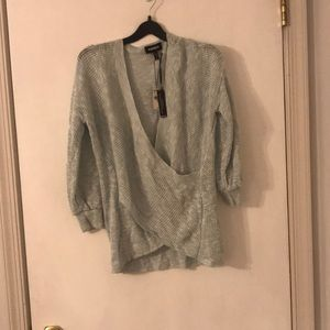 NWT blue Express sweater